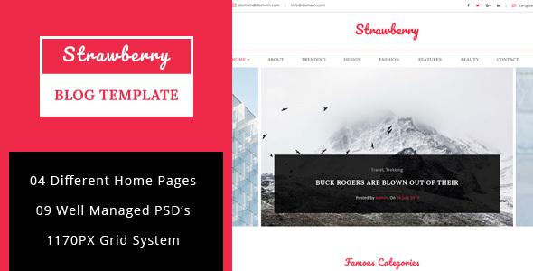 Strawberry - Minimal Blog PSD Template