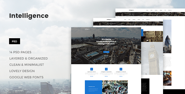 Intelligence - Individual & Corporate Investigations PSD Template