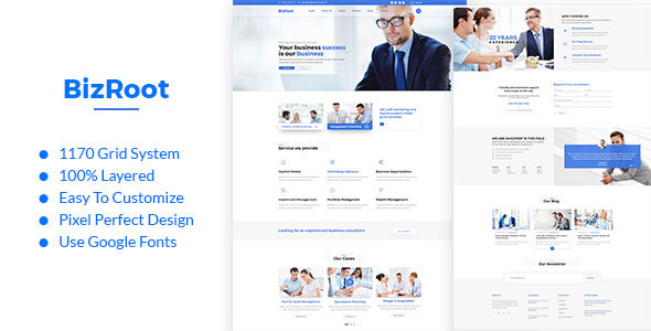 BizRoot - Business and Finance PSD Template