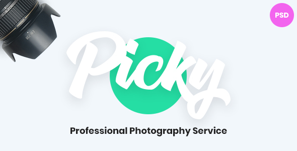 Picky - Professional Photography Service Website Psd Template